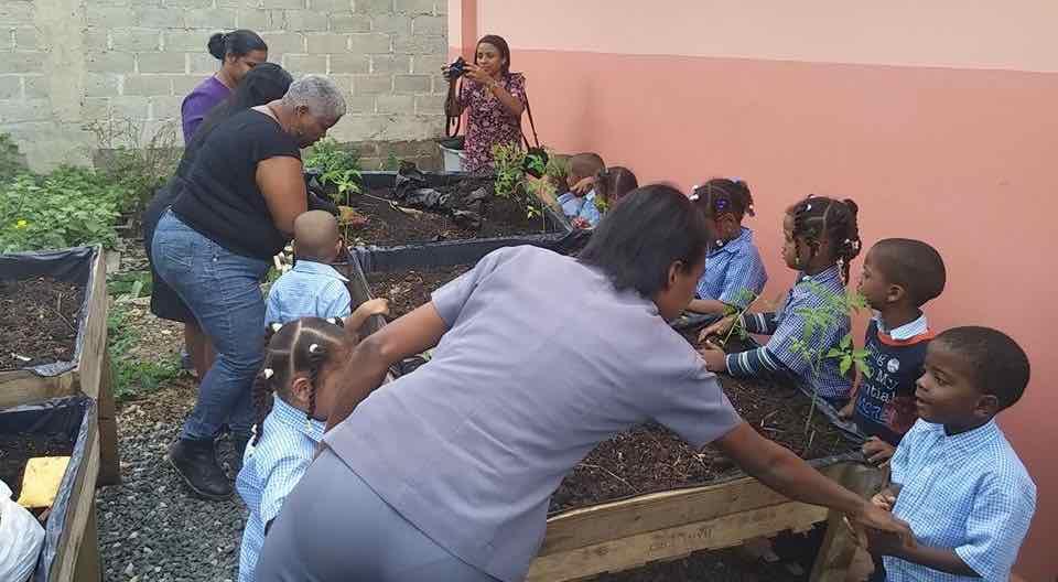 Educación ambiental: escuelas ecológicas