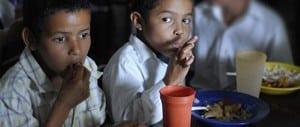 Nutrición ONG